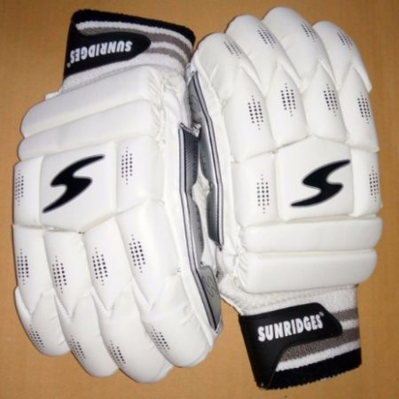 SS Dragon Cricket Batting Gloves