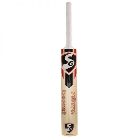 SG RSD PLUS Kashmir Willow Cricket Bat